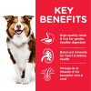 DOG MA Medium Lamb Transition Benefits 2 - Hill's Science Plan Medium Mature Adult 7+ Dog Food With Chicken