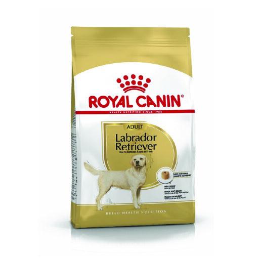 Labrador 06 - Royal Canin - Breed Health Nutrition Labrador Adult