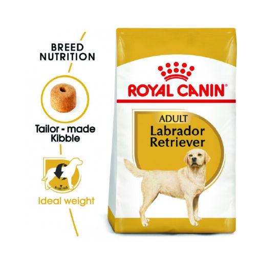 Labrador 07 - Royal Canin - Breed Health Nutrition Labrador Adult