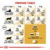 PERSIAN ADULT 02 - Royal Canin - Feline Breed Nutrition Persian