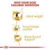 rc bhn beagle cv eretailkit 3 - Royal Canin - Breed Health Nutrition Beagle Adult
