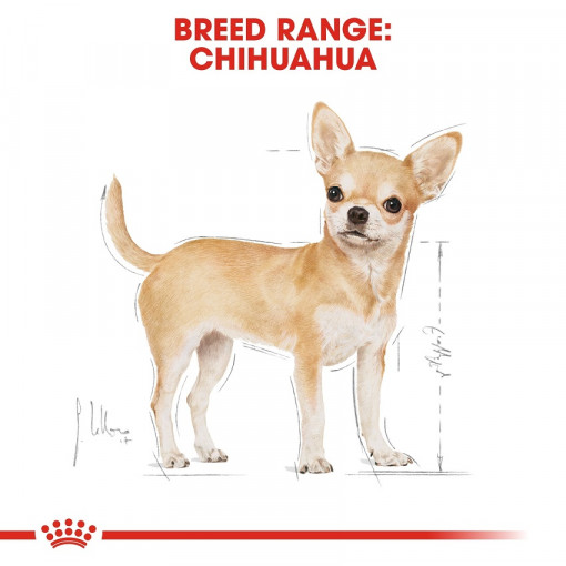 rc bhn chihuahua cv eretailkit 1 - Royal Canin - Breed Health Nutrition Chihuahua Adult