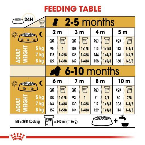 rc bhn puppycavalierkingcharles cv eretailkit 5 - Royal Canin - Breed Health Nutrition Cavalier King Charles Puppy