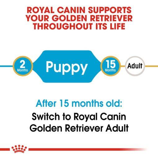 rc bhn puppygoldenretriever cv eretailkit 1 - Royal Canin - Breed Health Nutrition Golden Retriever Puppy