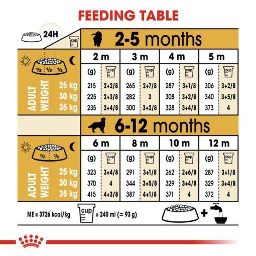 rc bhn puppygoldenretriever cv eretailkit 5 - Royal Canin - Breed Health Nutrition Golden Retriever Puppy
