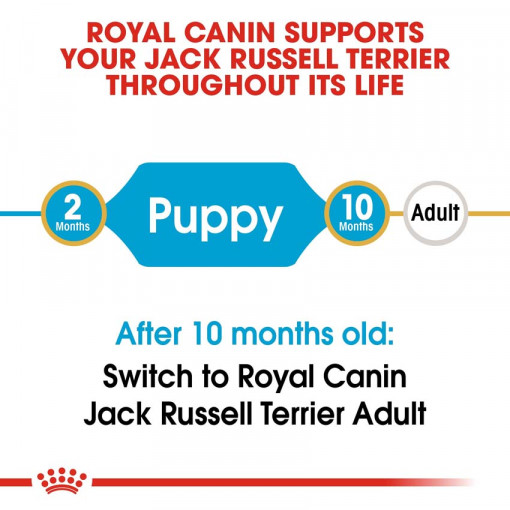 rc bhn puppyjackrussell cv eretailkit 1 - Royal Canin - Breed Health Nutrition Jack Russell Puppy