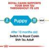 rc bhn puppyshihtzu cv eretailkit 1 - Royal Canin - Shih Tzu Puppy