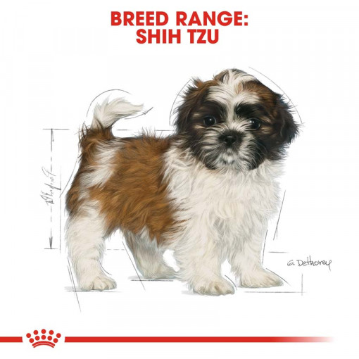 rc bhn puppyshihtzu cv eretailkit 4 - Royal Canin - Shih Tzu Puppy