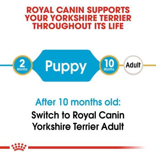 rc bhn puppyyorkshire cv eretailkit 1 - Royal Canin - Breed Health Nutrition Yorkshire Puppy