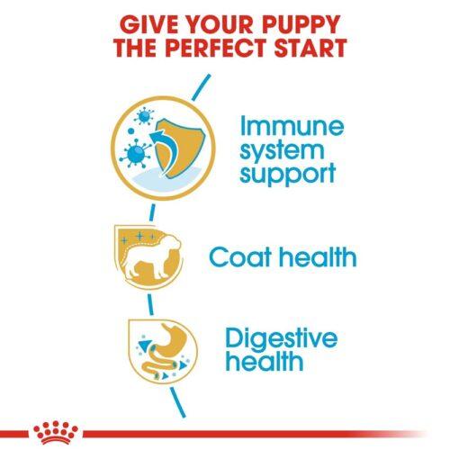 rc bhn puppyyorkshire cv eretailkit 3 - Royal Canin - Breed Health Nutrition Yorkshire Puppy