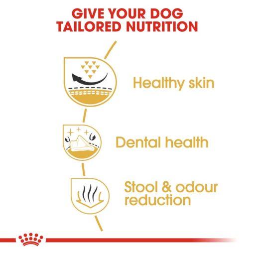 rc bhn shihtzu cv eretailkit 3 - Royal Canin - Breed Health Nutrition Shih Tzu Adult
