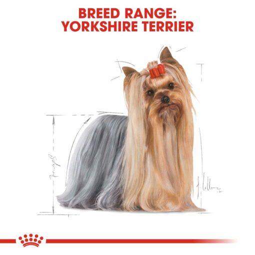 rc bhn yorkshire cv eretailkit 1 - Royal Canin - Breed Health Nutrition Yorkshire Adult