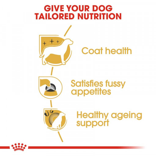 rc bhn yorkshire cv eretailkit 3 - Royal Canin - Breed Health Nutrition Yorkshire Adult