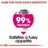 rc ccn exigentmini cv eretailkit 3 - Royal Canin - Canine Care Nutrition Mini Exigent (3 Kg)