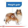 rc ccn lightmaxi cv eretailkit 2 - Royal Canin - Canine Care Nutrition Maxi Light Weight Care