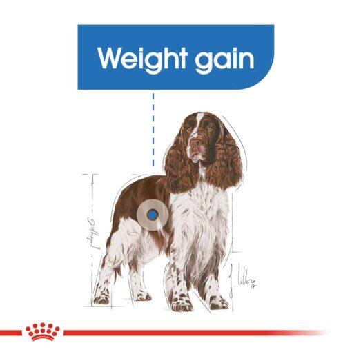 rc ccn lightmed cv eretailkit 2 1 - Royal Canin Canine Care Nutrition Medium Light Weight Care