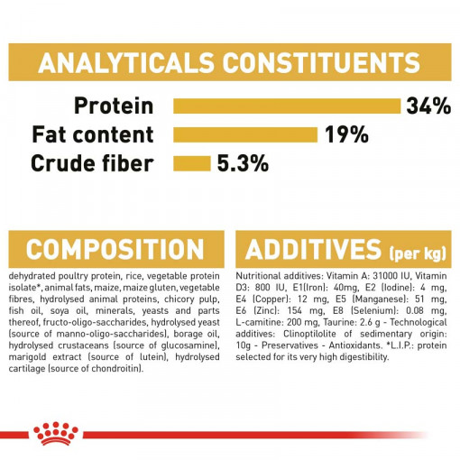 rc fbn britishsh cv eretailkit 6 - Royal Canin - Feline Breed Nutrition British Shorthair