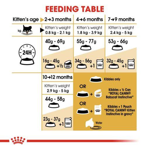 rc fbn kittenpersian cv eretailkit 5 - Royal Canin - Feline Breed Nutrition Kitten Persian