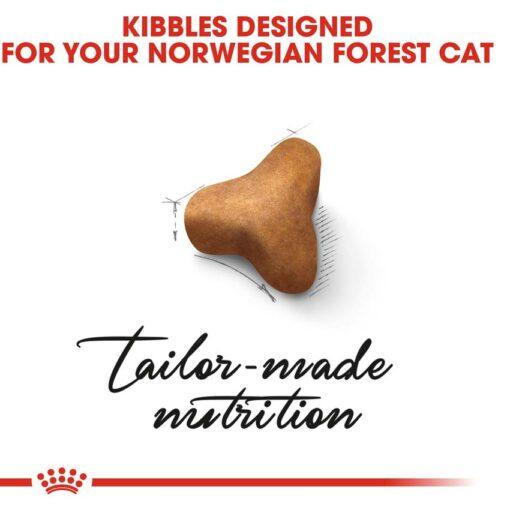 rc fbn norwegianfc cv eretailkit 2 - Royal Canin Feline Breed Nutrition Norwegian Forest Cat