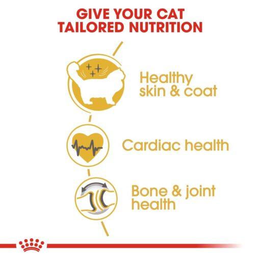 rc fbn ragdoll cv eretailkit 3 - Royal Canin - Feline Breed Nutrition Ragdoll