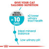 rc fcn urinary cv eretailkit 2 - Royal Feline Care Nutrition Urinary Care