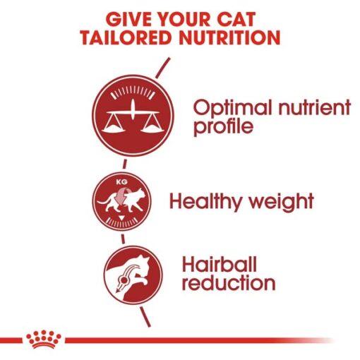 rc fhn fit32 cv eretailkit 2 1 - Royal Canin - Feline Health Nutrition Fit 32