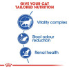 rc fhn indoor7 cv eretailkit 2 1 - Royal Canin - Feline Health Nutrition Indoor 7+ Years