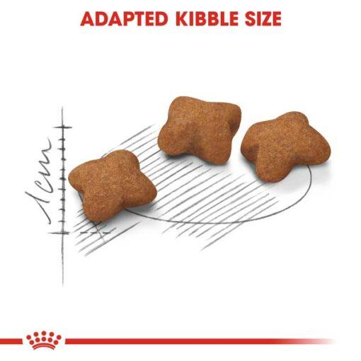 rc fhn kittensterilised cv eretailkit 3 - Royal Canin - Feline Health Nutrition Kitten Sterilised