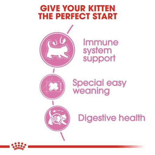 rc fhn m b cv eretailkit 2 1 - Royal Canin - Feline Health Nutrition Mother And Babycat