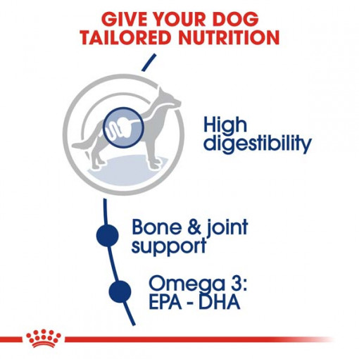 rc shn adultmaxi cv eretailkit 2 1 - Royal Canin - Size Health Nutrition Maxi Adult