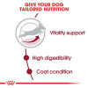 rc shn adultmedium7 cv eretailkit 2 - Royal Canin - Size Health Nutrition Medium Adult 7+