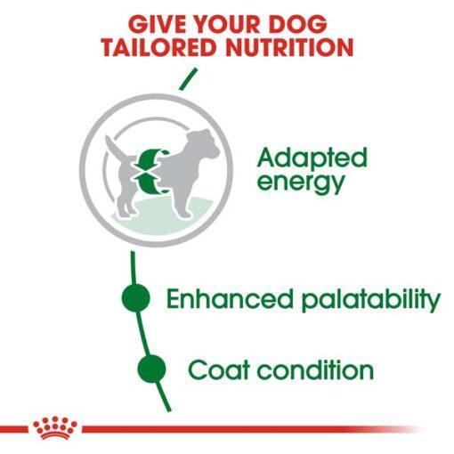 rc shn adultmini cv eretailkit 2 1 - Royal Canin - Size Health Nutrition Mini Adult
