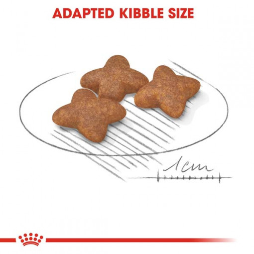 rc shn adultmini cv eretailkit 3 1 - Royal Canin - Size Health Nutrition Mini Adult