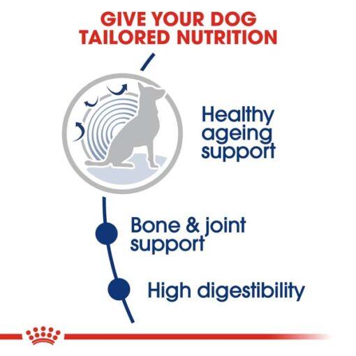rc shn ageingmaxi8 cv eretailkit 2 - Royal Canin - Size Health Nutrition Maxi Ageing 8+