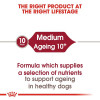 rc shn ageingmedium10 cv eretailkit 1 - Royal Canin - Size Health Nutrition Medium Ageing 10+