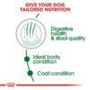 rc shn miniindooradult cv eretailkit 2 - Royal Canin Health Nutrition Mini Indoor Adult