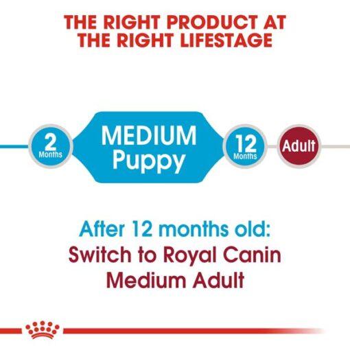 rc shn puppymedium cv eretailkit 1 2 - Royal Canin - Size Health Nutrition Medium Puppy