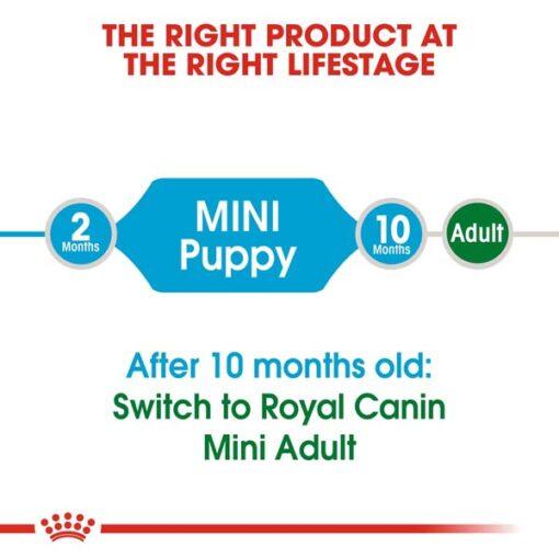 rc shn puppymini cv eretailkit 1 2 - Royal Canin - Size Health Nutrition Mini Puppy