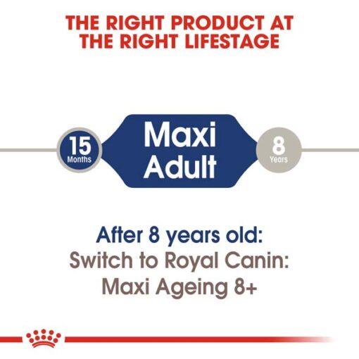 rc shn wet maxiadult cv eretailkit 1 - Royal Canin - Size Health Nutrition Maxi Adult
