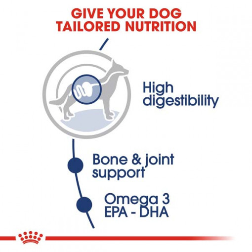 rc shn wet maxiadult cv eretailkit 2 - Royal Canin - Size Health Nutrition Maxi Adult