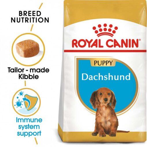 ro189410 - Royal Canin - Dachshund Puppy