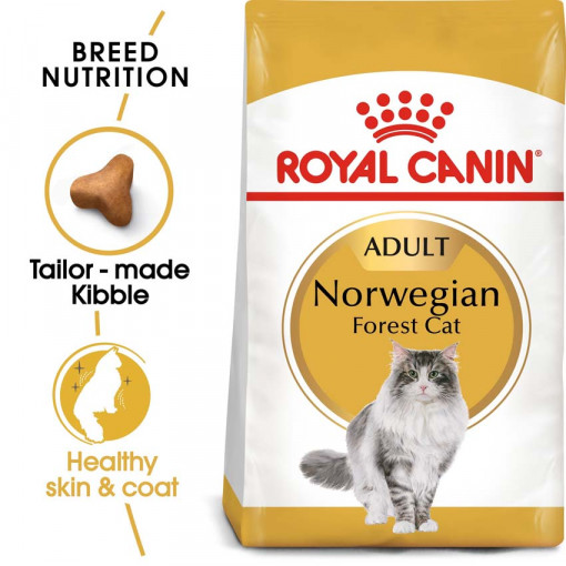 ro235070 - Royal Canin Feline Breed Nutrition Norwegian Forest Cat