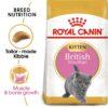 ro251990 - Royal Canin - Feline Breed Nutrition British Shorthair Kitten