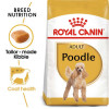 ro255620 - Royal Canin - Poodle Adult