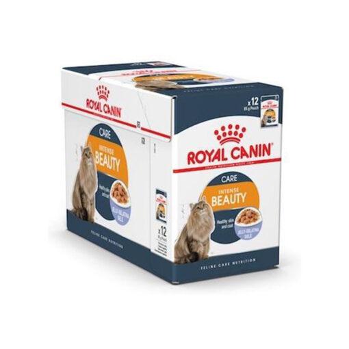 INTENSE BEAUTY JELLY 06 - Royal Canin - Feline Care Nutrition Intense Beauty Jelly