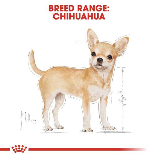 rc bhn wet chihuahua cv eretailkit 1 - Royal Canin - Adult Chihuahua Wet Food