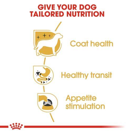rc bhn wet chihuahua cv eretailkit 3 - Royal Canin - Adult Chihuahua Wet Food
