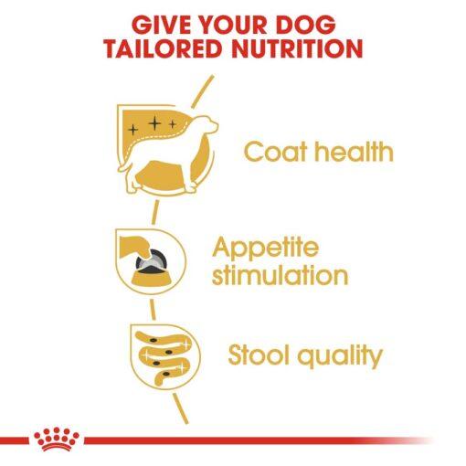 rc bhn wet yorkshire cv eretailkit 3 - Royal Canin - Adult Yorkshire Terrier Wet Food