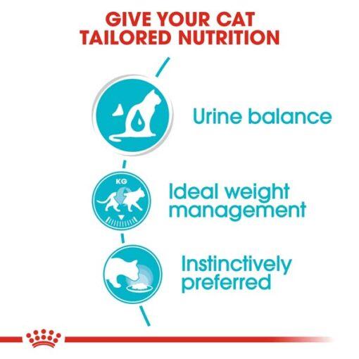 rc fcn wet urinarycaregravy cv eretailkit 2 - Royal Canin - Feline Care Nutrition Urinary Care
