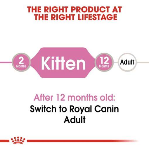 rc fhn kitteninstinctivegravy cv eretailkit 1 - Royal Canin Feline Health Nutrition Kitten Gravy